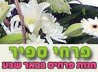 פרחי ספיר
