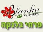 משלוחי פרחים נתניה - פרחי בלנקה