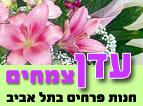 פרחי עדן-צמחים
