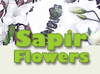 Sapir Flowers