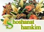 Shoshanat Hamakim - flower deliveries in Afula