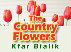 The Country Flowers