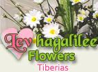 Lev Hagalilee Flowers