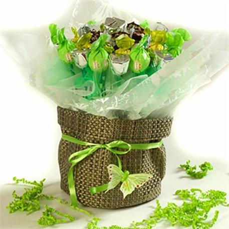 """מק""""ט 004 אהבה מתוקה - ירוק"""